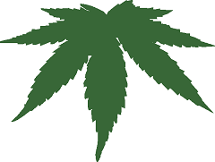 1194984703896920016cannabis_leaf_anonymous_.svg.hi